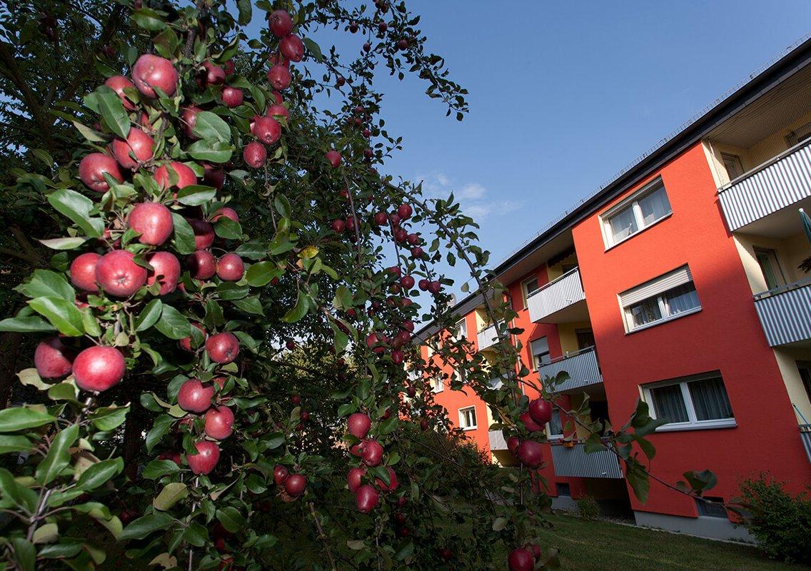 Bild des Wohngebiets Neuhof