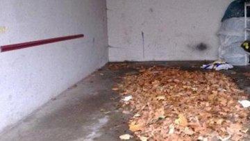 Bild einer Garage